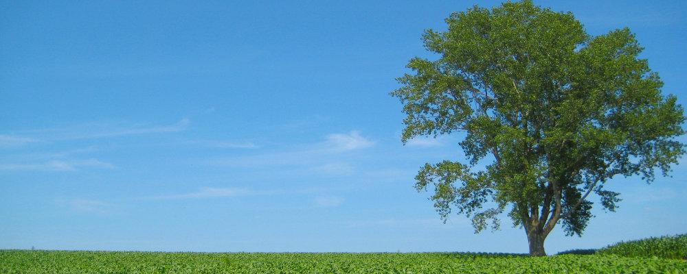 農協共済中伊豆リハビリテーションセンター伊東の丘のよくある質問ページのサブイメージ画像
